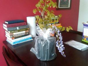 My brand new - blooming! - wisteria plant.